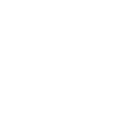 FSR WiWi Logo